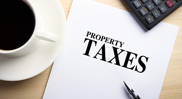 Image result for property tax consultant